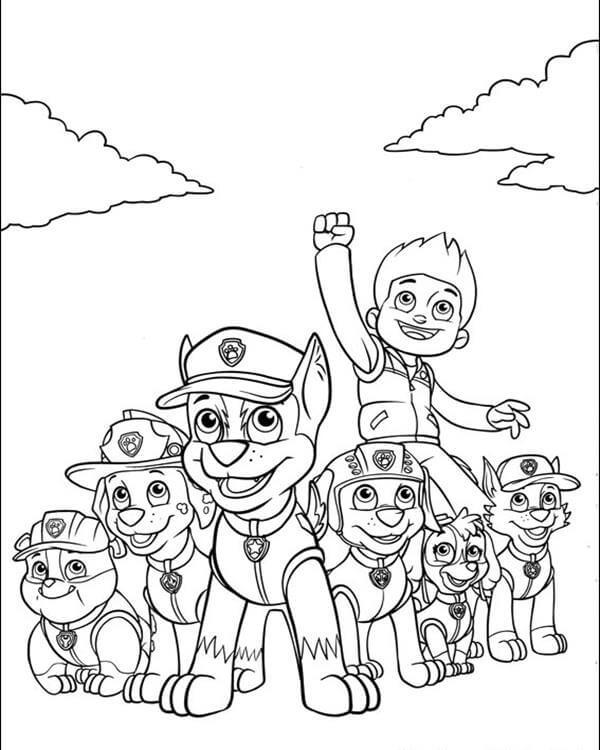 Райдер со своей командой щенков из Щенячьего патруля